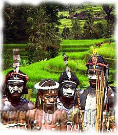 петербург индонезия экзотика